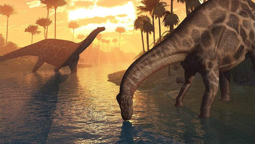 La biblia no menciona a los dinosaurios .jpg